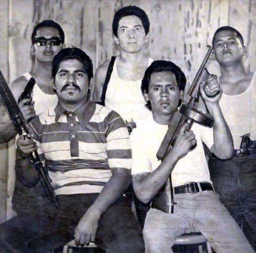 essay gangs