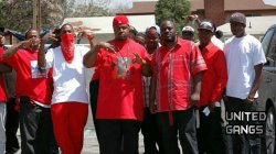 Delmann Heights Bloods