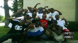 Hustla Squad Clicc Gang