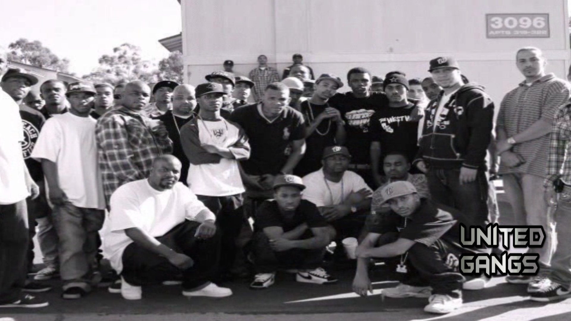 unitedgangscom category archive long beach crips
